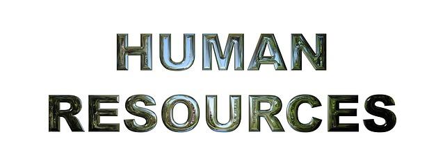 lidské zdroje