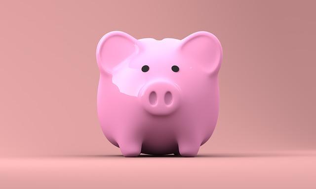 Hypotéka bez příjmu