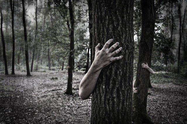 ruce kolem stromu.jpg